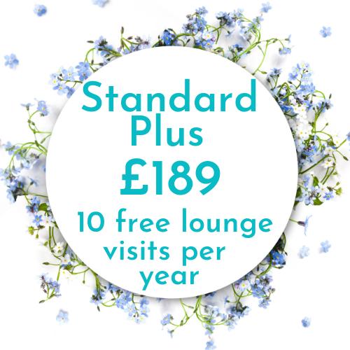 Heathrow lounges - standard plus